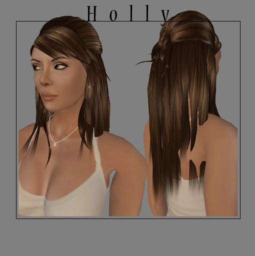 holly-web-ad.png