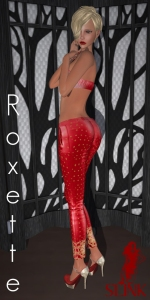 Slink Roxette Poster