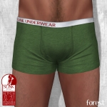 Slink - Male Boxers - Forest